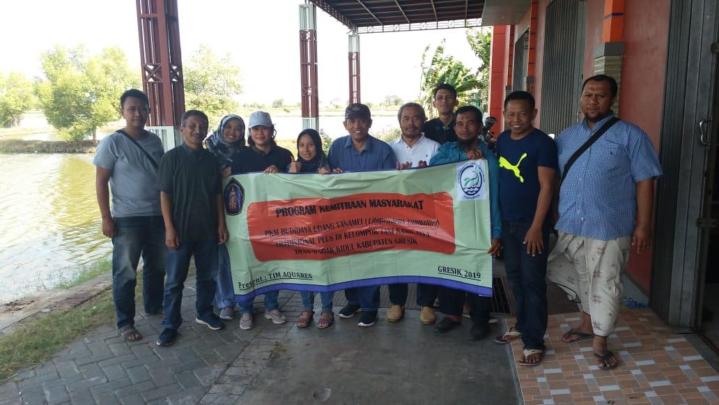 Tiga Dosen FPIK UB Lakukan PKM Budidaya Udang Vanamei di Kabupaten Gresik