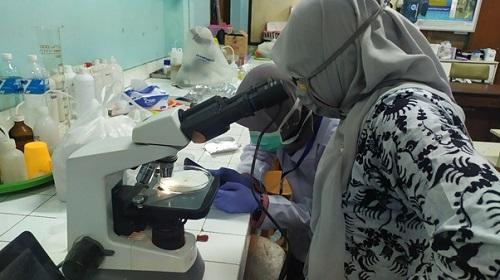 Kolaborasi FPIK dan FMIPA  UB Meneliti Bahaya Mikroplastik Pada Ikan